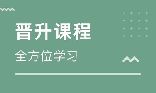 重庆南川区童程童美学习scratch趣味编程