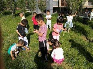 深圳布吉街教少儿专注力提高的机构