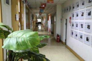 2020年杭州附近小儿学编程速成班