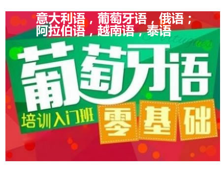 北京望京专业学阿拉伯语的学校