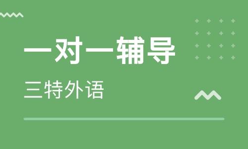 2021渭南初中语文辅导班哪好